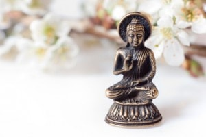 Buddha blessing all life